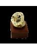 Морской компас в деревянном футляре малый NA-1660-B