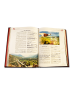 Книга в коже Подробно о вине для гурманов и ценителей 593 (з)